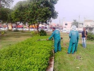 گزارشی از عملکرد واحد فضای سبز شهرداری منطقه4 در اردیبهشت 96