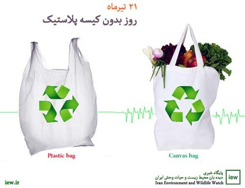 bags-500x384
